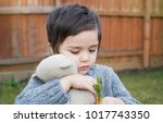 cute little boy playing with...   Shutterstock . vector #1017743350