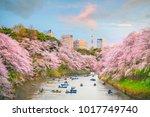 chidorigafuchi park in tokyo... | Shutterstock . vector #1017749740