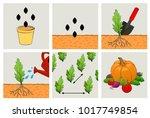 circuit planting seeds....   Shutterstock . vector #1017749854