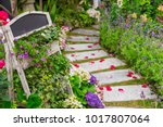 path in beautiful green garden | Shutterstock . vector #1017807064