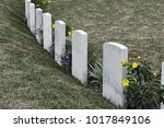 tombstone and graves in an... | Shutterstock . vector #1017849106