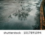 puddle of water on asphalt and...   Shutterstock . vector #1017891094