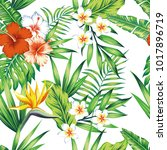 bright exotic tropical flowers... | Shutterstock .eps vector #1017896719