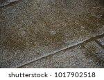 rain drops on the granite floor | Shutterstock . vector #1017902518
