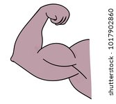 strong biceps arm | Shutterstock .eps vector #1017902860