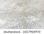 White Wool With White Top...