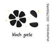 doodle  hand drawn black garlic ... | Shutterstock .eps vector #1017906496