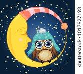 a sweet cartoon brown owl in a... | Shutterstock . vector #1017927193