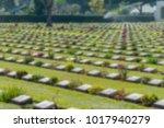 blurred military cemetery ... | Shutterstock . vector #1017940279
