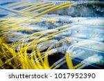 fiber optical connector... | Shutterstock . vector #1017952390