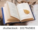 Stock photo literature reading and poetry concept book with autumn leaf on blanket at home 1017965803