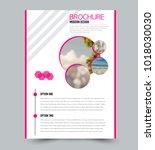 flyer design template. brochure ... | Shutterstock .eps vector #1018030030