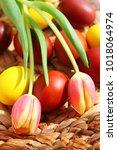 easter eggs  in the basket for... | Shutterstock . vector #1018064974