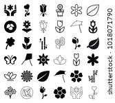floral icons. set of 36... | Shutterstock .eps vector #1018071790