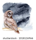 the owl sits on a branch of... | Shutterstock . vector #1018126966