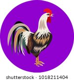 chicken is a poultry   Shutterstock .eps vector #1018211404