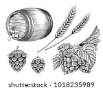 beer ingredients set  barrel ... | Shutterstock .eps vector #1018235989