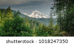 mount shasta viewed from a...