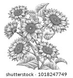 retro sunflower elements ... | Shutterstock .eps vector #1018247749