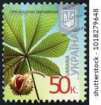 Small photo of UKRAINE - CIRCA 2014: stamp printed in Ukraina shows (aesculus hippocastanum) horse chestnut leaf with fruit; 50; circa 2014