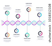 abstract dna molecule vector... | Shutterstock .eps vector #1018312108