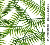 seamless pattern with palm... | Shutterstock . vector #1018316593