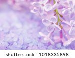 spa sea salt and flower branch... | Shutterstock . vector #1018335898