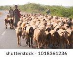 Bhuj  Gujarat  India  25...
