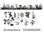 isolated silhouette of grass... | Shutterstock . vector #1018406200