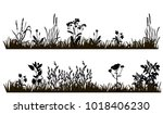 isolated silhouette of grass... | Shutterstock . vector #1018406230
