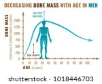 decreasing bone mass with age... | Shutterstock .eps vector #1018446703