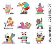 funny animals doing exercise.... | Shutterstock .eps vector #1018451404