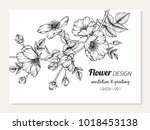invitation and greeting card... | Shutterstock .eps vector #1018453138