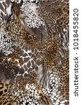 leopard and zebra tiger... | Shutterstock . vector #1018455820