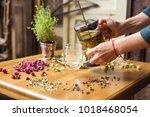 healthy herbal tea with flowers ... | Shutterstock . vector #1018468054