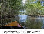 small boat sailing on mangroves ... | Shutterstock . vector #1018473994