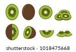 set of fresh kiwi fruit... | Shutterstock .eps vector #1018475668