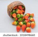beautiful ripe red strawberries ...   Shutterstock . vector #1018498660