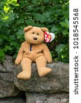 Small photo of WREXHAM, UK - MAY 31, 2015: Collectible Ty Beanie Baby, Fuzz the bear. Birth date July 23 1998, retired December 23 1999. Sat on a stone wall with Gooseberry bush background. With heart shaped tag.
