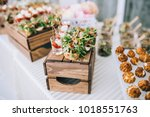 beautifully decorated catering... | Shutterstock . vector #1018551763