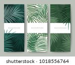 branding packaging palm coconut ... | Shutterstock .eps vector #1018556764