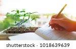 biotechnology laboratory... | Shutterstock . vector #1018639639