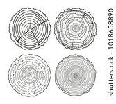 tree rings. mandala. objects... | Shutterstock . vector #1018658890