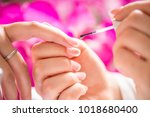 close up of process france... | Shutterstock . vector #1018680400