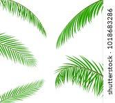 tropical green leaves. jungle... | Shutterstock .eps vector #1018683286
