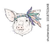 pig in an indian feather... | Shutterstock .eps vector #1018702648