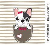 Stock vector cute dog in the pocket french bulldog puppy dog vector illustration 1018704844