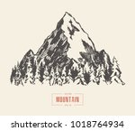 vector illustration of a... | Shutterstock .eps vector #1018764934