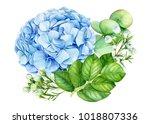 Bouquet Of Flowers  Watercolor...