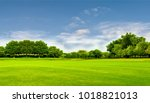 green field  tree and blue sky... | Shutterstock . vector #1018821013